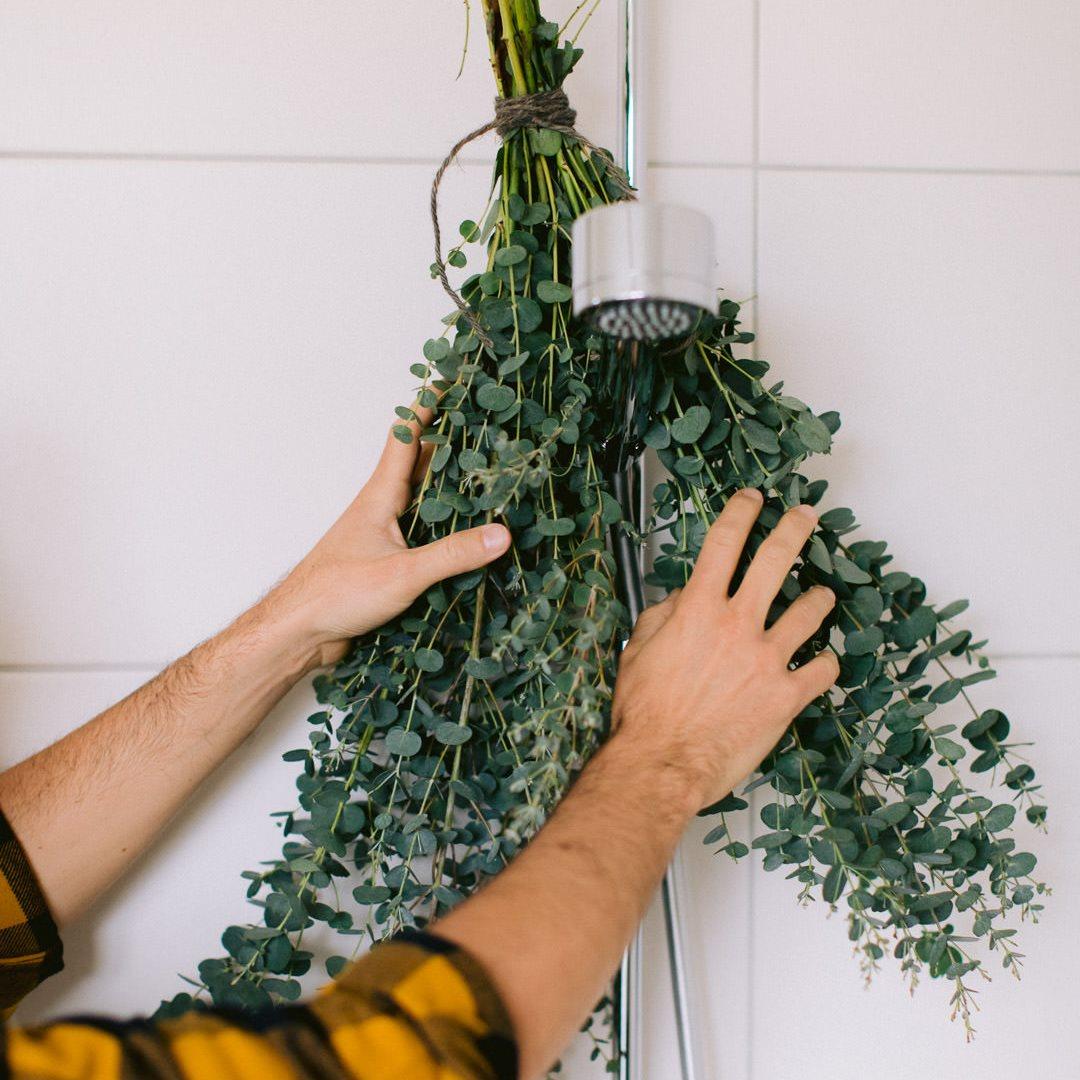 Ricola Eucalyptus  Dusche Anleitung - Step  3